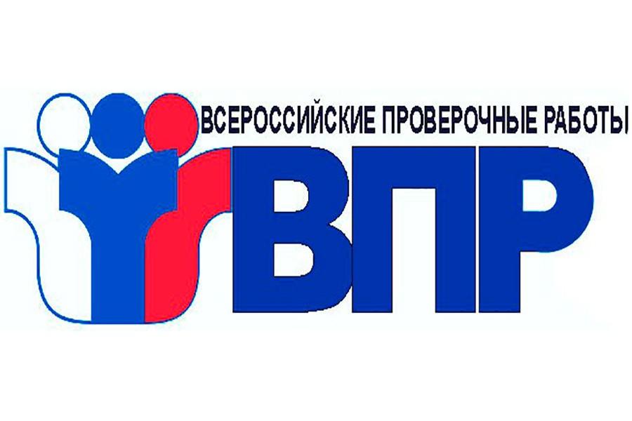Расписание всероссийских проверочных работ в 2021 году