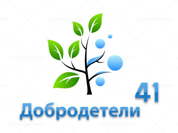 Волонтерская организация